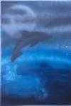 Moonlight Dolphin Small